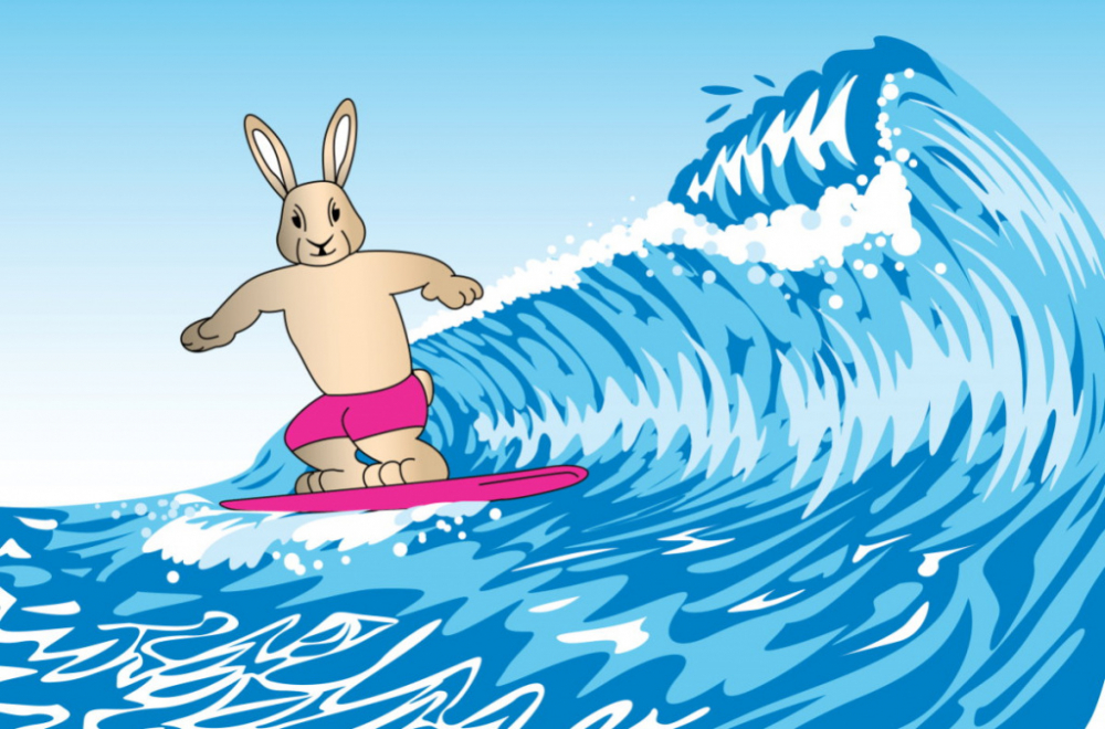Agile surfing rabbit