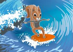 Surfing squirrel